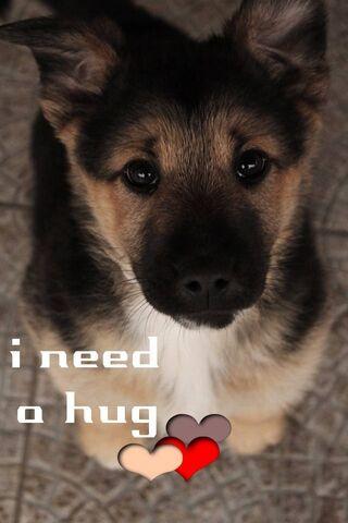 Potrzeba przytulenia