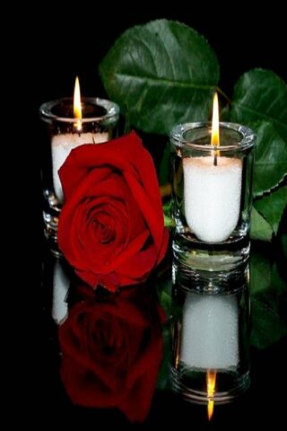 Love Rose Candle