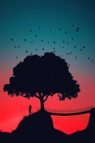 Love Birds Hd Wallpaper Download To Your Mobile From Phoneky