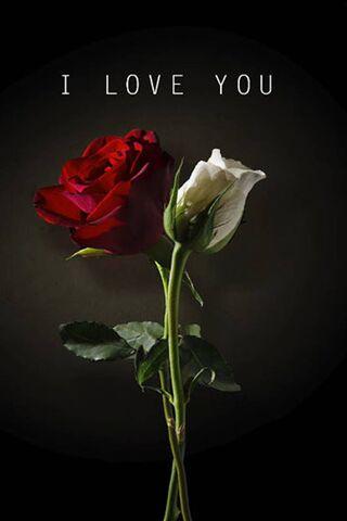 Saya sayang awak