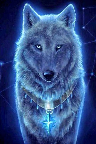 Sternwolf