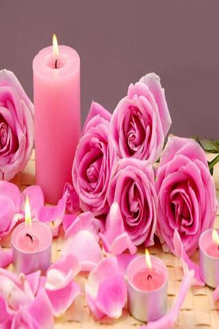 Candle Pink Roses