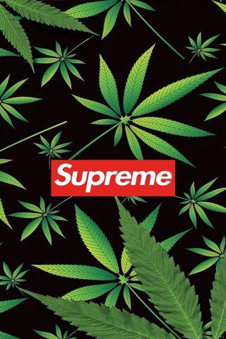 W**d Supreme