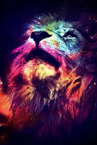 Lion Colorful
