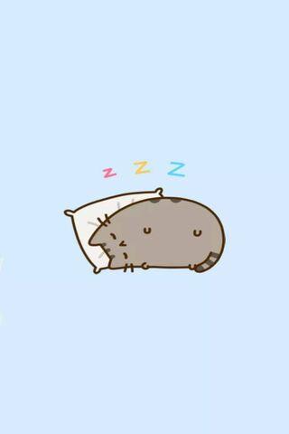 Pusheen Katze
