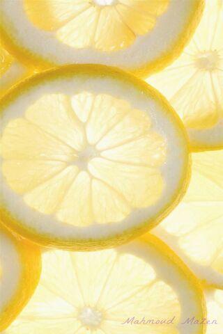 Fresh Cool Lemon