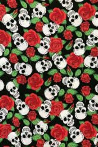 Color Skull Roses Wallpaper Download To Your Mobile From