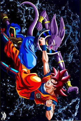 Ssg Goku 대 Beerus
