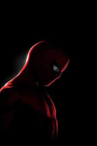 Павук Темний