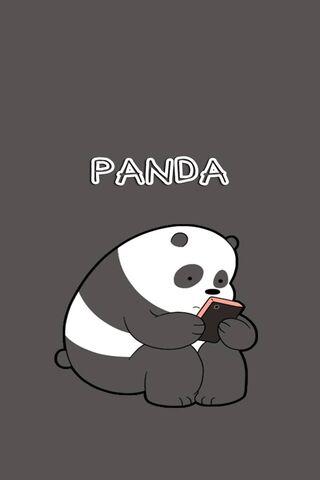 Barebears Panda