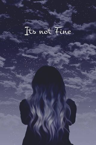 Its Not Fine