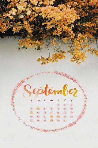 Tháng 9 năm 2018