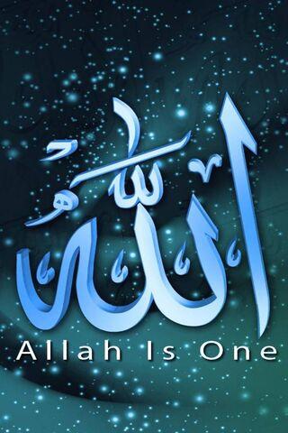 真主是一个