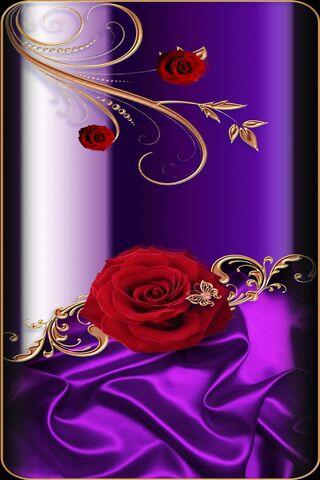 Roseofelegance