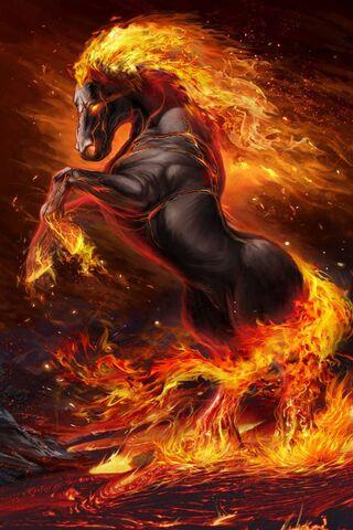 Kuda Api