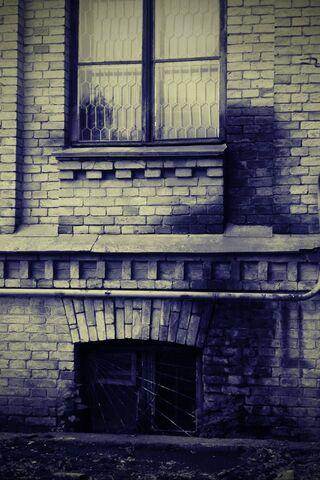 Cửa sổ tầng hầm