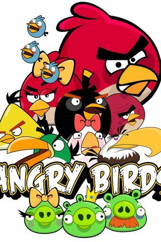 गुस्से में पक्षियों सभी पक्षी