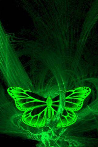 3D-Green Butterfly