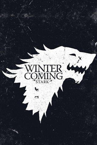सर्दिया आ रही है