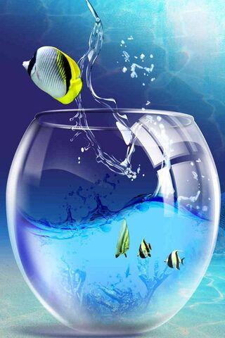 Fish Animation