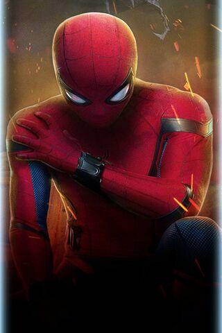 स्पाइडरमैन घर वापसी