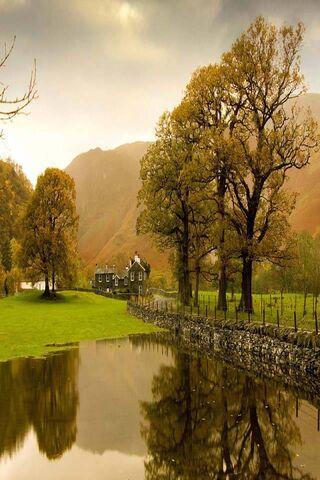 Autumn Silent Nature