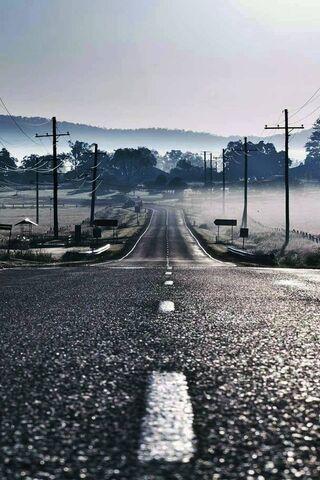 Camino a la niebla