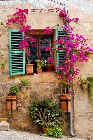 نافذة او شباك