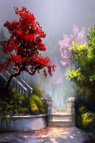 Red Tree Nature