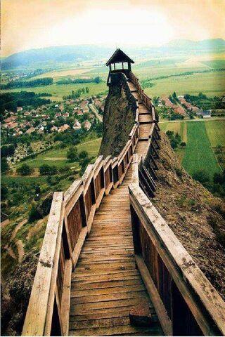 Wonderful Path