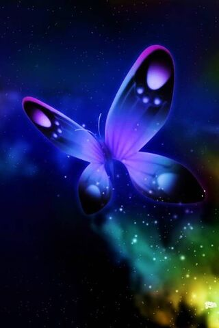 Światła motyla