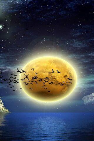 चंद्रमा पक्षी सागर