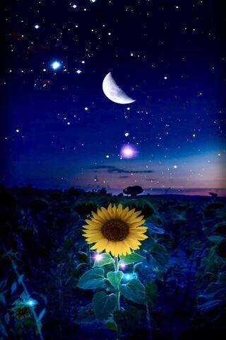 Sol luna estrellas