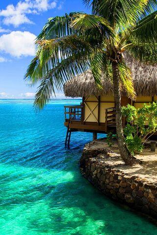Pulau tropika