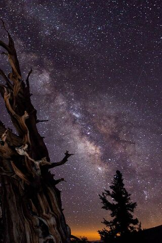 Sky During Night