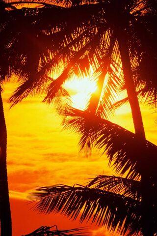Set Sun