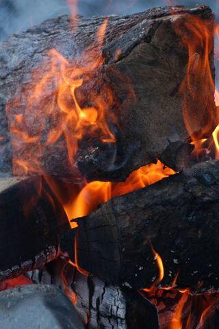 Hd Fire Wood
