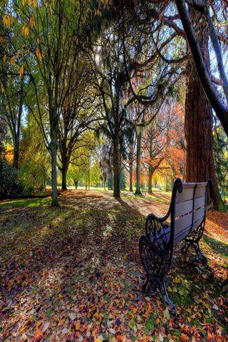 foto de Banc d'automne Fond d'écran - Télécharger sur votre mobile depuis ...