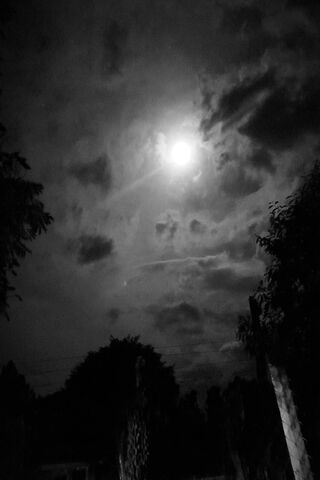 Night Sky Nature