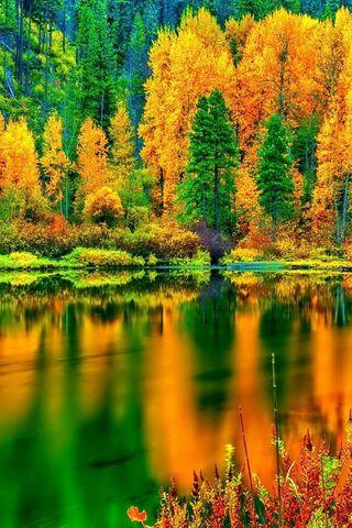 शरद ऋतु झील