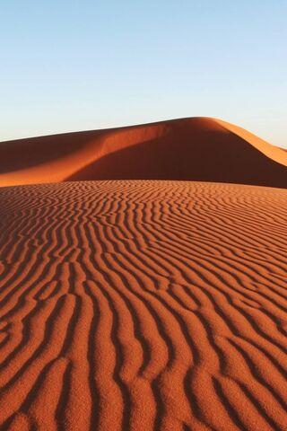 Sahara235