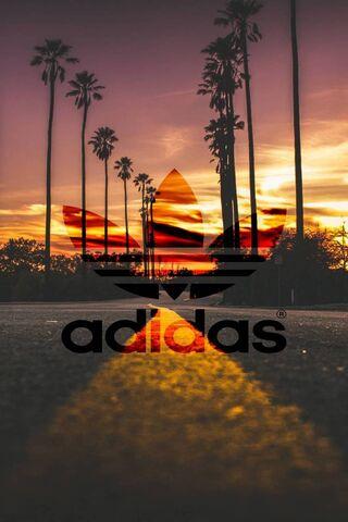 Adidas-California