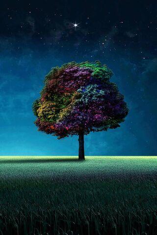 شجرة ملونة