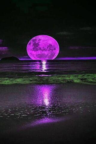 Bulan Purnama Ungu