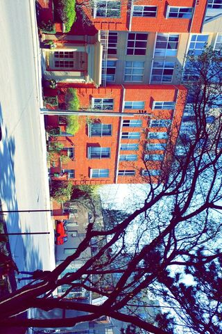 Urban Colors