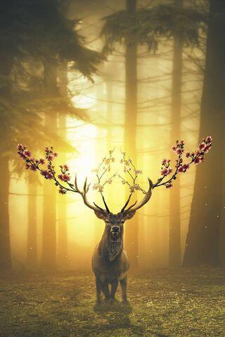 Весняний лісовий олень