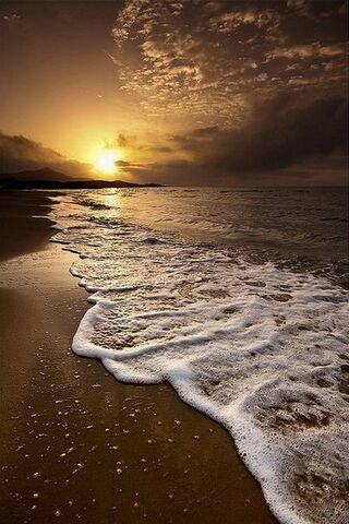 Sun N Sea