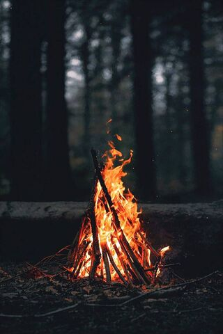 Drewno i ogień