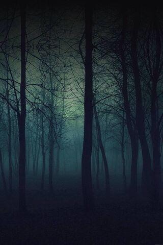 घना जंगल
