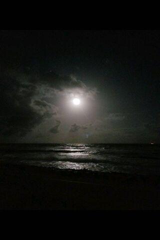 मुग्ध रात